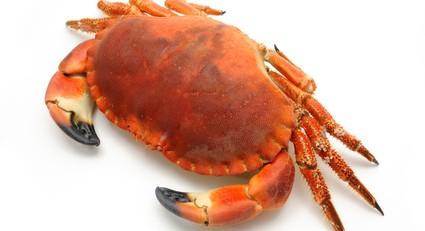 cuisson des crabes au court bouillon
