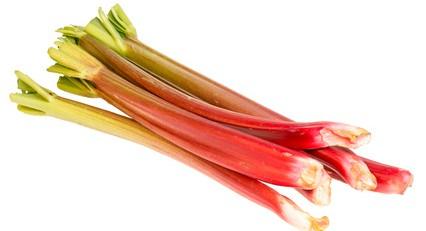 Pousses de rhubarbe